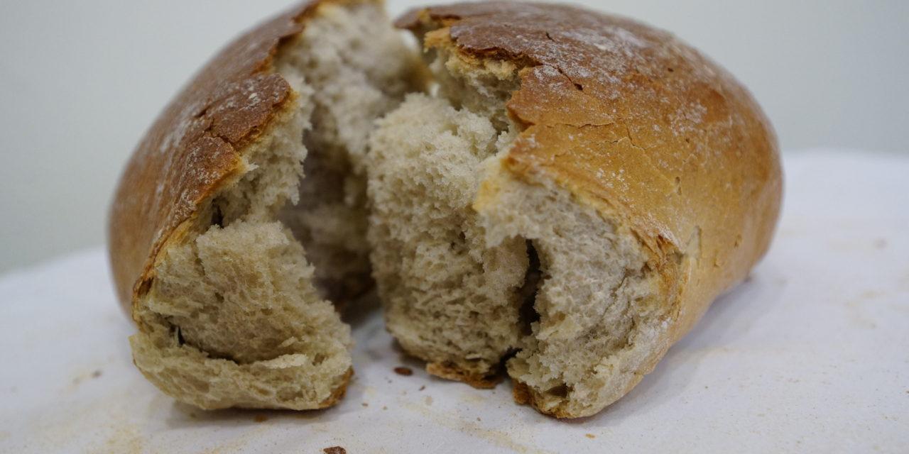 Być dobrym jak chleb. List Pasterski Episkopatu Polski na Niedzielę Miłosierdzia